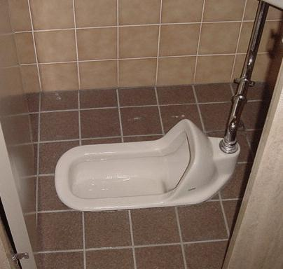 japanese style toilet seat. This is so true  Sitting on a Japanese toilet it fun The toilets of Japan Travel Opinions Pro